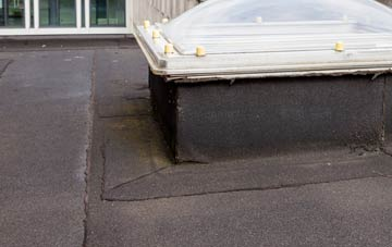 disadvantages of Tanfield flat roofs