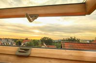 rated Tanfield roof window companies